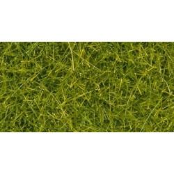 Erba verde chiaro 4 mm 20 gr