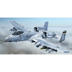 A-10C Blacksnackes 1/48