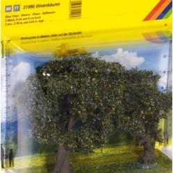 2 olivi 60 e 90 mm