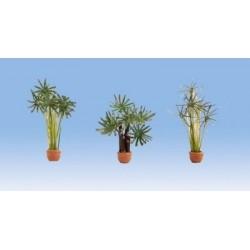 3 Vasi decorativi con palme...